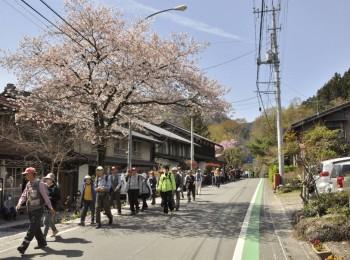②桜が咲く秩父路をウオーキング