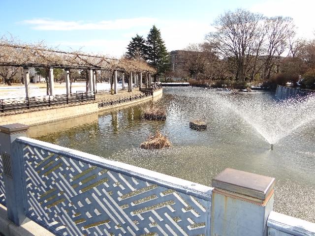【4回】武蔵国分寺公園 右