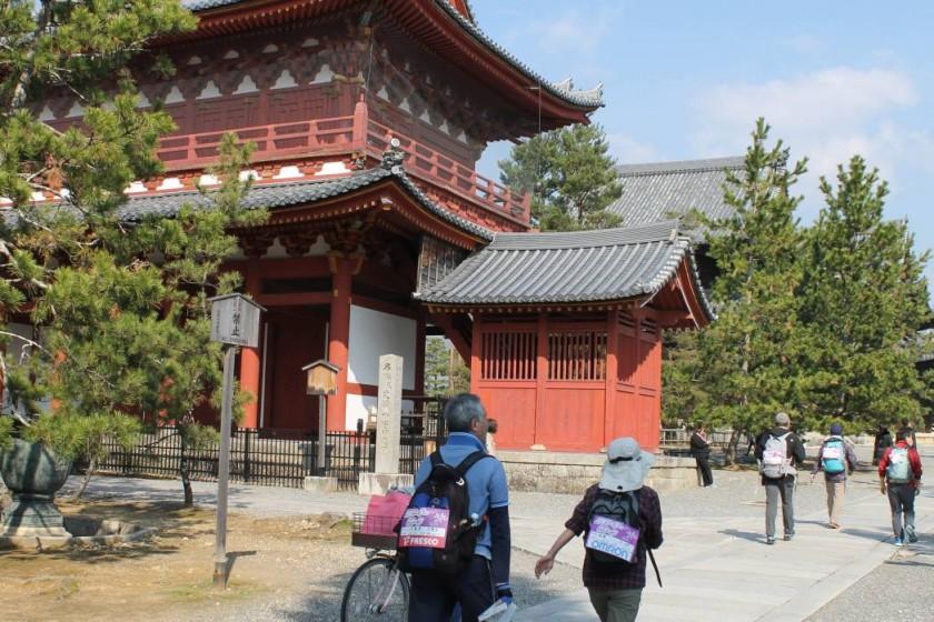 妙心寺を訪ねる